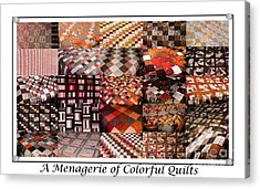 A Menagerie Of Colorful Quilts -  Autumn Colors - Quilter Acrylic Print by Barbara Griffin