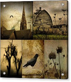 A Page  Acrylic Print by Gothicrow Images