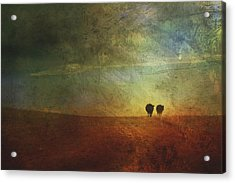 A Painterly Image Of Two Cows Walking Acrylic Print by Roberta Murray