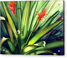 A Peek Through The Leaves Acrylic Print by Lyse Anthony