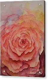A Rose Beauty Acrylic Print by Kathleen Pio