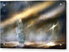 A Rose On The Plain Acrylic Print by Georgiana Romanovna