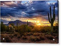 A Sonoran Desert Sunrise Acrylic Print by Saija  Lehtonen