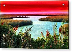 A Sunset Crimsoned Acrylic Print by Julie Dant