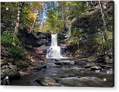 A Touch Of Autumn At Sheldon Reynolds Falls Acrylic Print by Gene Walls