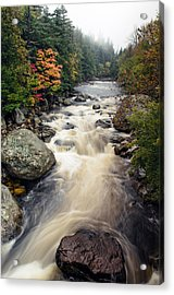 A Touch Of Fall Acrylic Print by Mark Papke