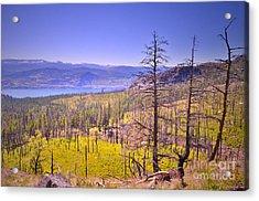 A View From Okanagan Mountain Acrylic Print by Tara Turner