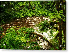 A View Of Eagle Creek Acrylic Print by Jeff Swan