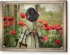 A Walk In The Garden Acrylic Print by Terry Fleckney