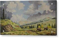 A Warm Day At Yellowstone Nat. Park Acrylic Print by Wanda Dansereau