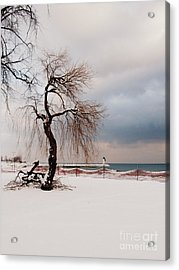 A Winter's Day On Lake Ontario Canada Acrylic Print by Avis  Noelle