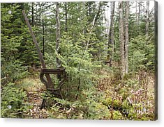 Abandoned Harp Switch Stand - New England Usa Acrylic Print by Erin Paul Donovan