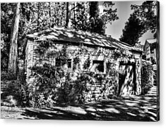 Abandoned Mono Acrylic Print by Steve Purnell