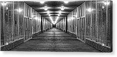 Abandoned Strip Mall Panoramic Acrylic Print by Tom Mc Nemar