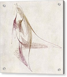 Abstract Bird Acrylic Print by David Ridley