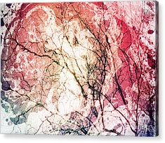 Abstract Branches Acrylic Print by Jennifer Kimberly