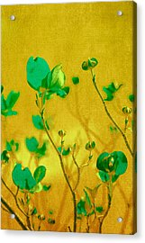 Abstract Dogwood Acrylic Print by Bonnie Bruno