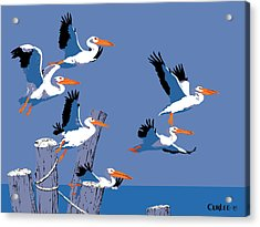 abstract Pelicans seascape tropical pop art nouveau 1980s florida birds large retro painting  Acrylic Print by Walt Curlee