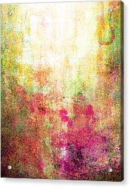 Abstract Print 14 Acrylic Print by Filippo B