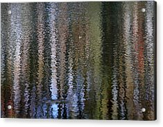 Abstract Tree Reflections Acrylic Print by Juergen Roth