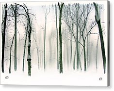 Abstract Winter Acrylic Print by Jessica Jenney