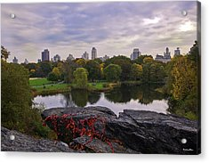 Across The Pond 2 - Central Park - Nyc Acrylic Print by Madeline Ellis