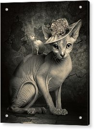 Adopted Acrylic Print by Cindy Grundsten