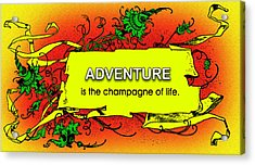 Adventure Acrylic Print by Mike Flynn