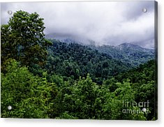 After The Storm Acrylic Print by Thomas R Fletcher