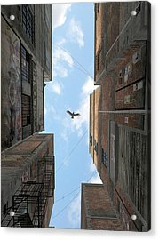 Afternoon Alley Acrylic Print by Cynthia Decker