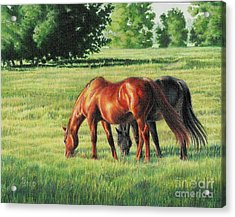 Afternoon Graze Acrylic Print by Carrie L Lewis