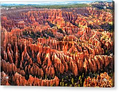 Afternoon Hoodoos Acrylic Print by Robert Bales