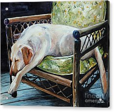 Afternoon Nap Acrylic Print by Molly Poole