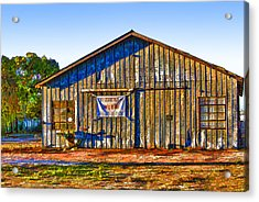 Aged Metal Shed Cartoon Acrylic Print by Linda Phelps