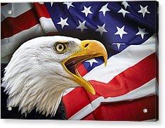 Aggressive Eagle And United States Flag Acrylic Print by Daniel Hagerman