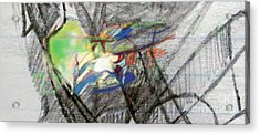 Self-renewal 23aa Acrylic Print by David Baruch Wolk