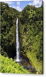 Akaka Falls Acrylic Print by Mike Herdering