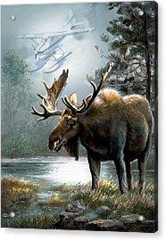 Alaska Moose With Floatplane Acrylic Print by Regina Femrite