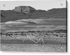 Alien Wreckage Bw - Lake Powell Acrylic Print by Julie Niemela