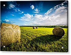 All American Hay Bales Acrylic Print by David Morefield