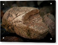 All It's Cracked Up To Be Acrylic Print by Jen Baptist