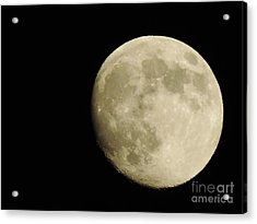 Almost Full Acrylic Print by Tom Riggs