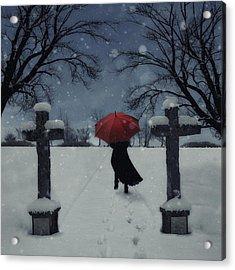 Alone In The Snow Acrylic Print by Joana Kruse