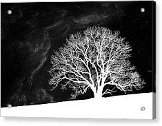 Alone On A Hill Acrylic Print by Tom Mc Nemar
