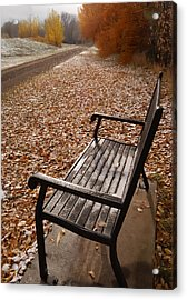 Alone With Autumn Acrylic Print by Steven Milner