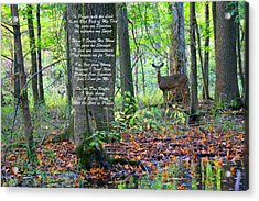Alone With God Acrylic Print by Lorna Rogers Photography
