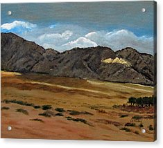 Along The Way To Eilat Acrylic Print by Linda Feinberg