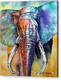 Alpha Acrylic Print by Maria Barry