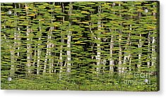 Altered Reflections Acrylic Print by Howard Ferrier