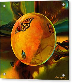 Ambered Butterfly Orb Acrylic Print by Robin Moline
